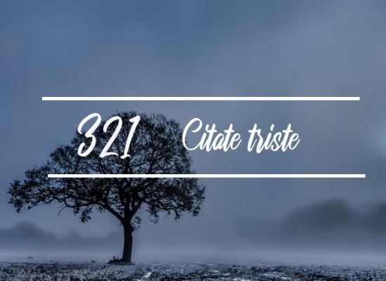 321 Citate Triste - O Colectie Deosebita Cu Rol Motivational