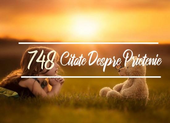 748 Cele Mai Frumoase Citate Despre Prietenie
