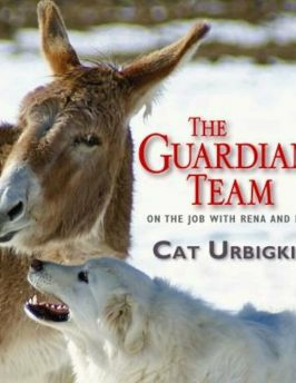 The Guardian Team: On the Job with Reena and Roo, Hardcover
